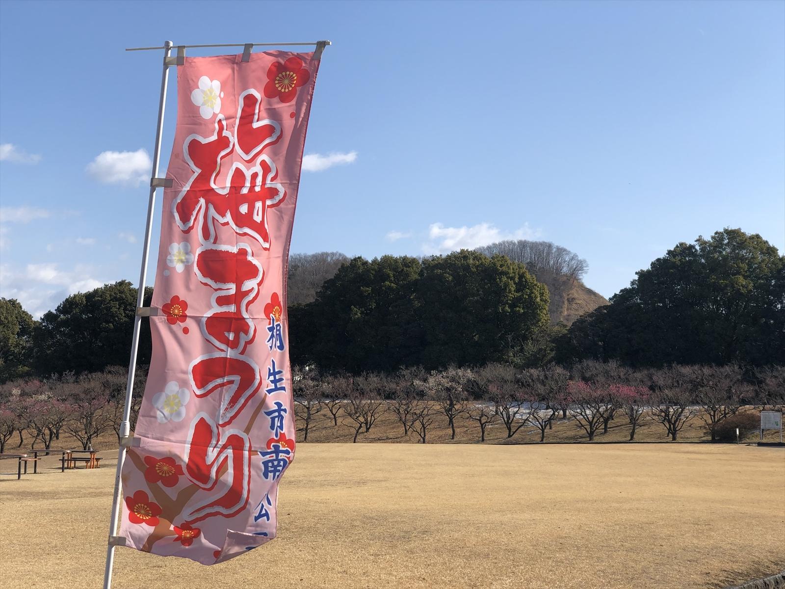 桐生南公園梅まつり